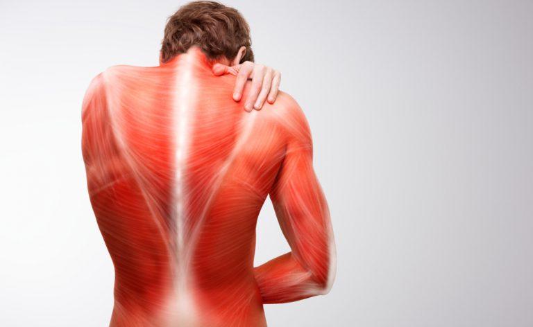 Magnésio contra dor muscular